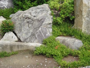 Photo of large grey stones with green plant by a path