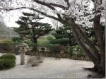 booming trees along garden path